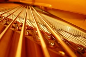 Close-up of piano strings
